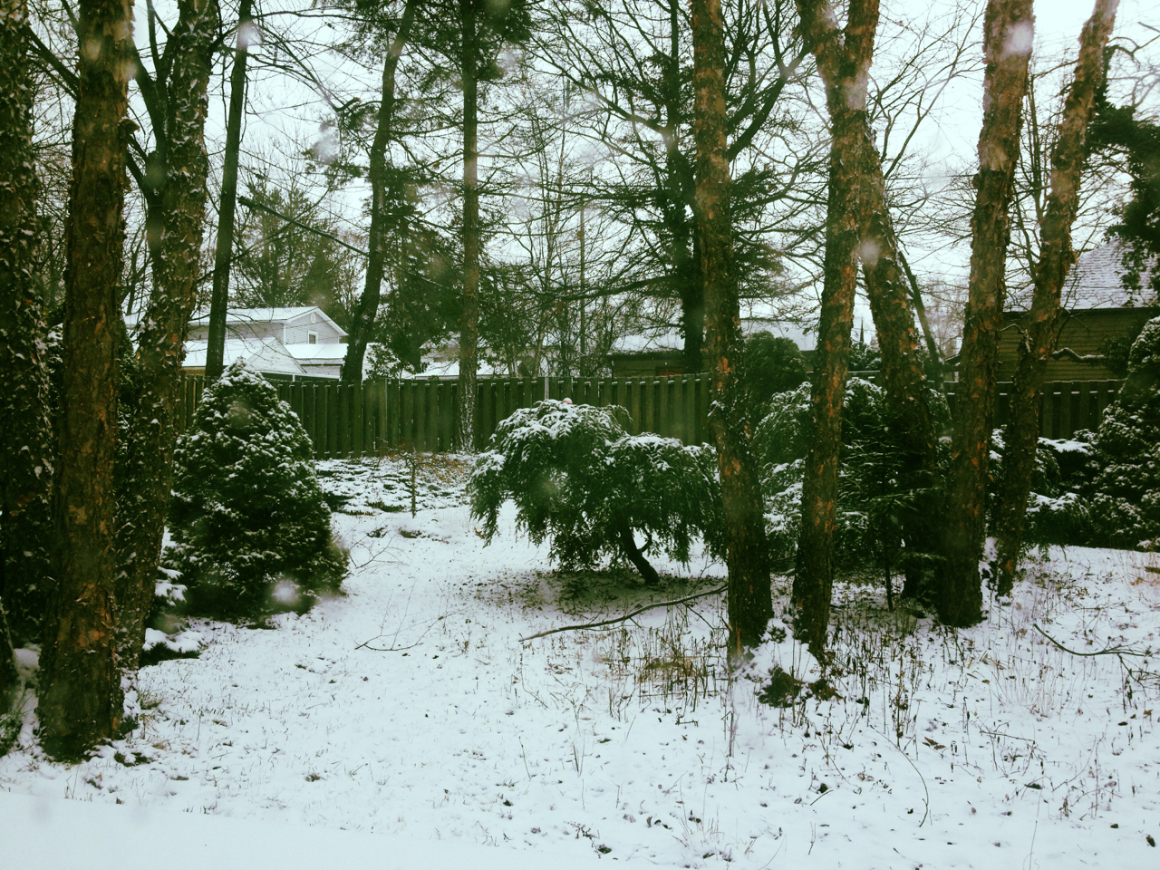 Ah, winter. I don't quite loathe you just yet in this photo.